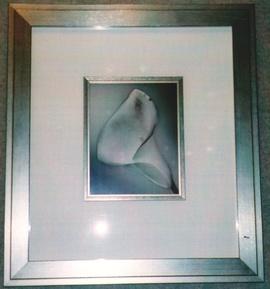 framing-photo2-270